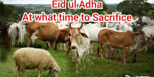 Eid ul Adha- when to sacrifice