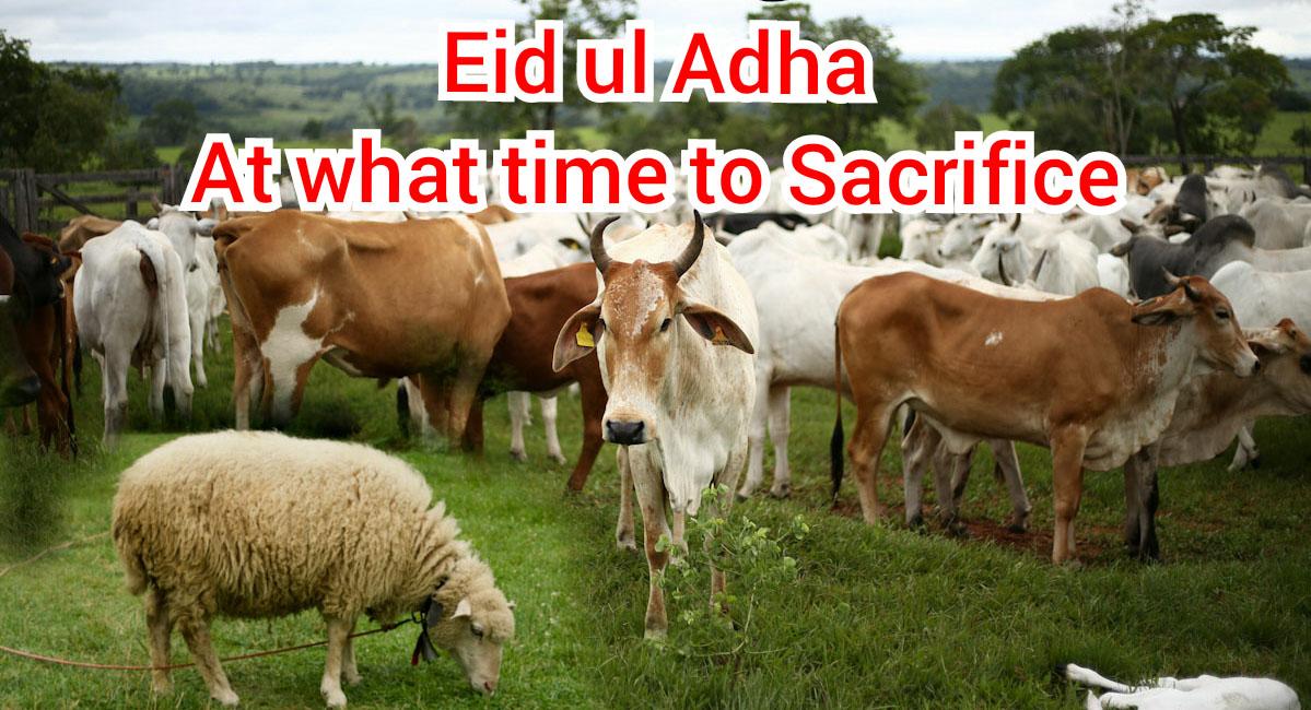 Eid ul Adha